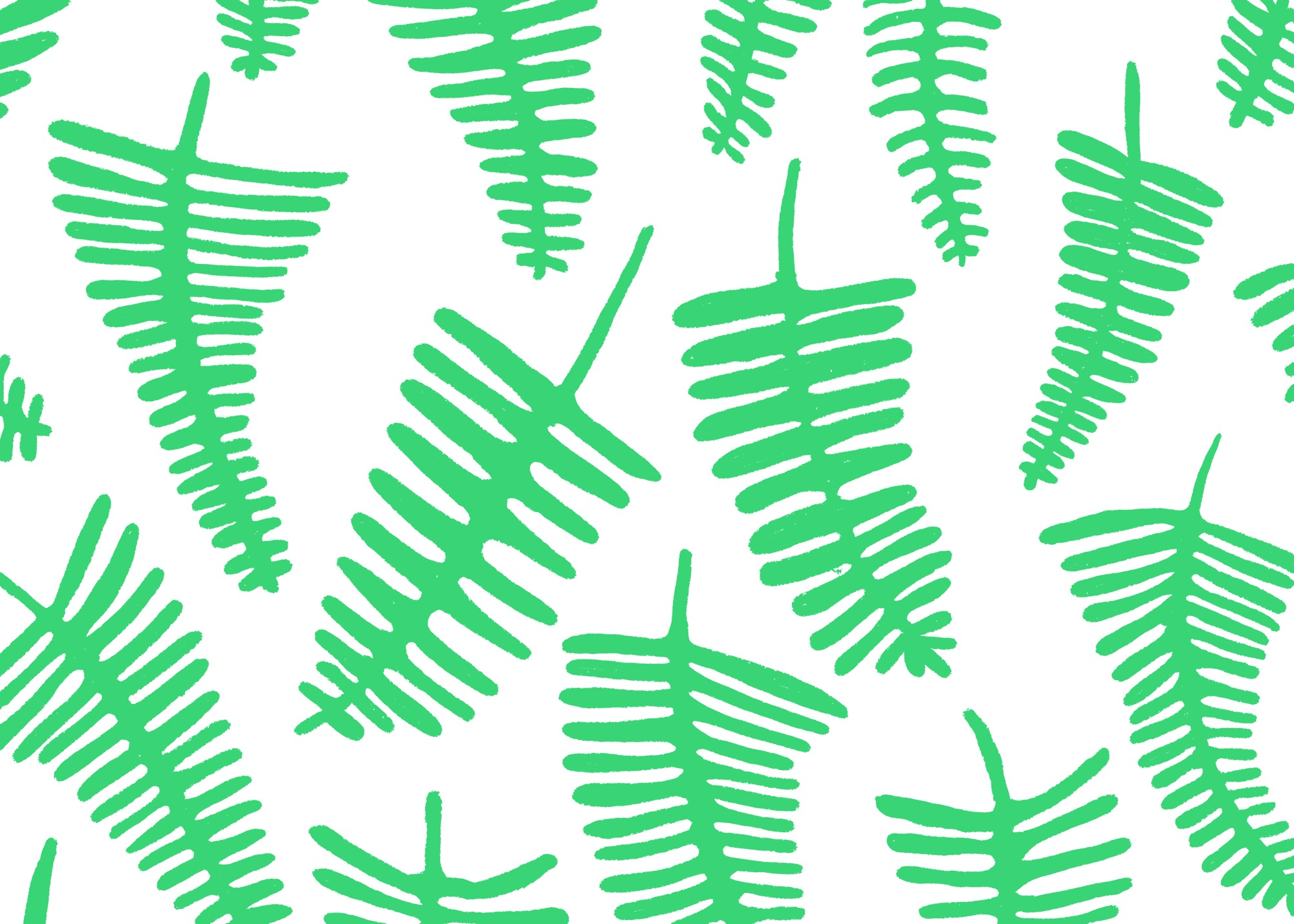 Ferns by Lisa Bardot