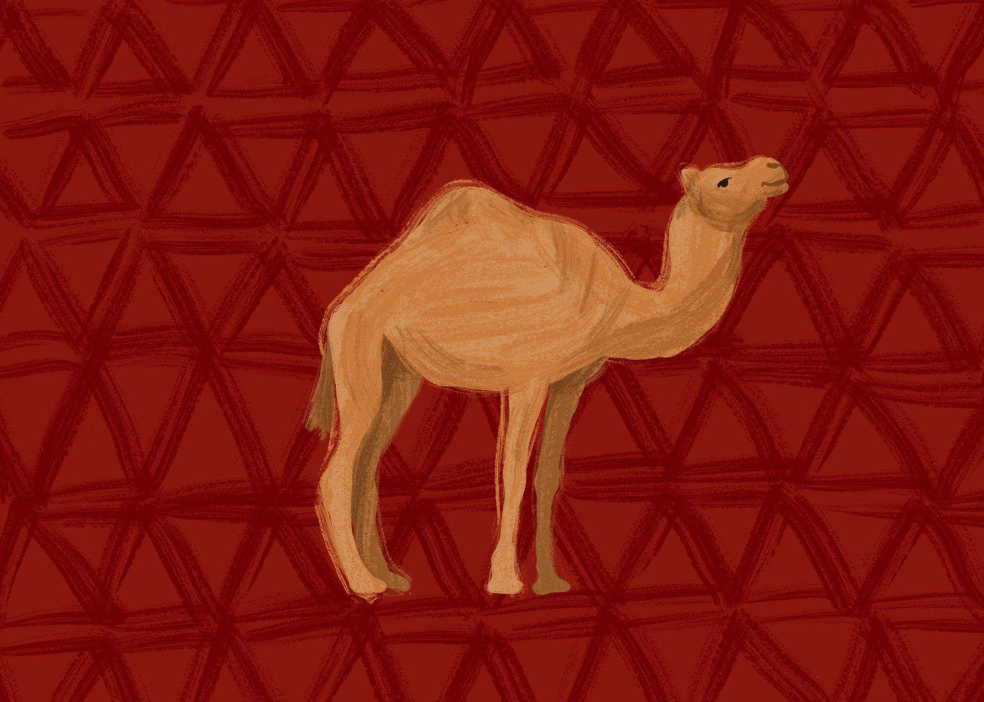 Camel by Lisa Bardot